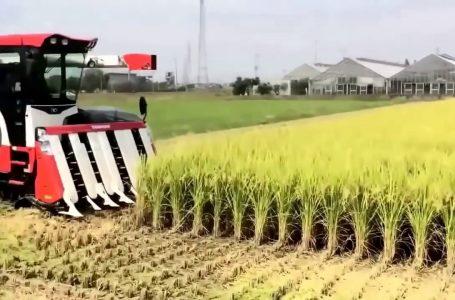 Petani Kurang Alat Pertanian